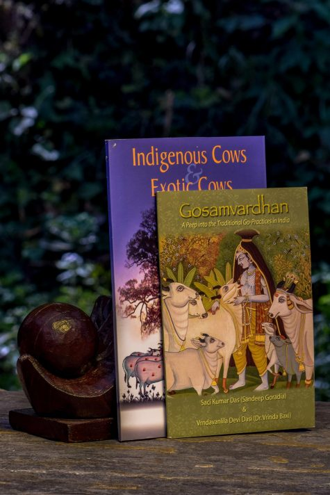 Indigenous Cows And Exotic Cows